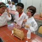 Grundschüler Erleben Forschertag Am AVG